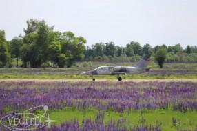 jet-flights-summer-2019-22